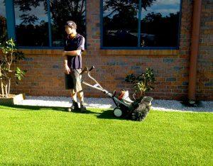 DIY Grasses Brisbane, Logan, Ipswich, Sunshine Coast, Gold Coast, Bayside, Redlands