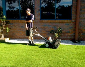 DIY Grasses Brisbane, Logan, Ipswich, Sunshine Coast, Gold Coast, Bayside, Redlands